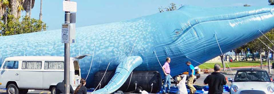 Blue Whale Giant Inflatable